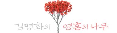 김명화의 영혼의 나무